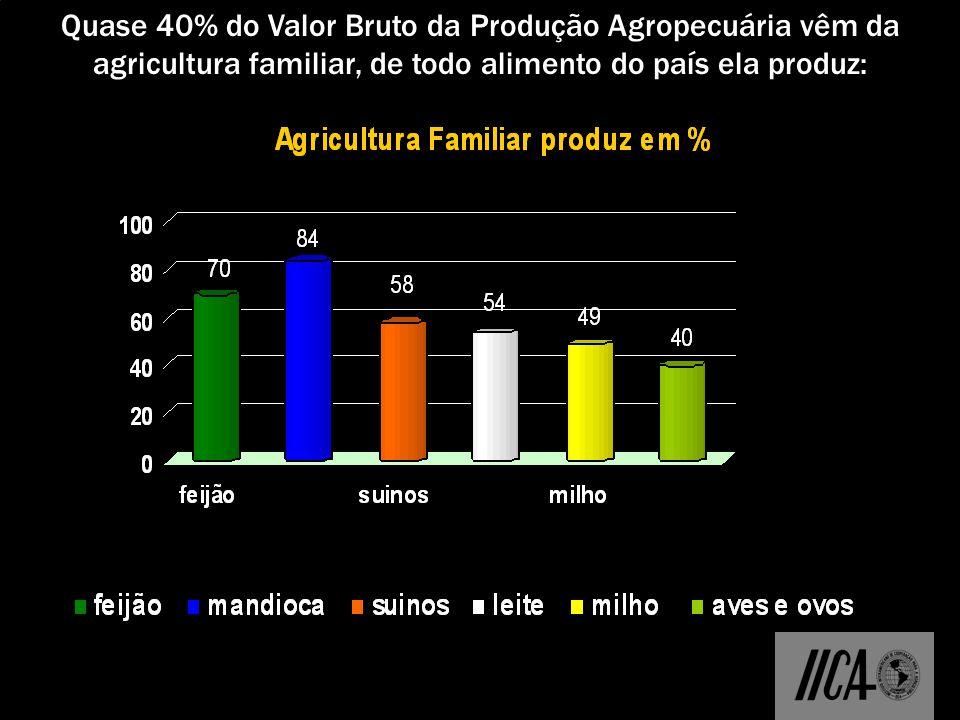 Quase 40% do Valor Bruto da Produção Agropecuária vêm da agricultura familiar, de todo alimento do país ela produz:
