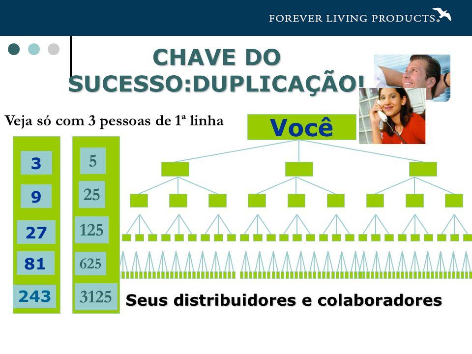 CHAVE DO SUCESSO:DUPLICAÇÃO.