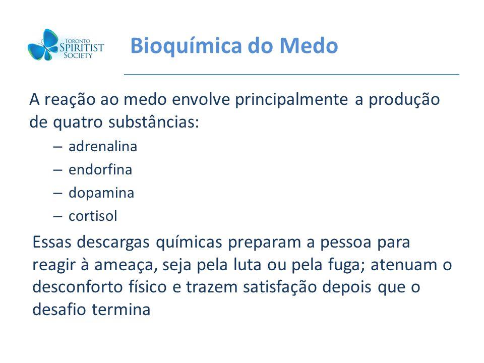 Bioquímica do Medo A reação ao medo envolve principalmente a produção de quatro substâncias: – adrenalina – endorfina – dopamina – cortisol Essas desc