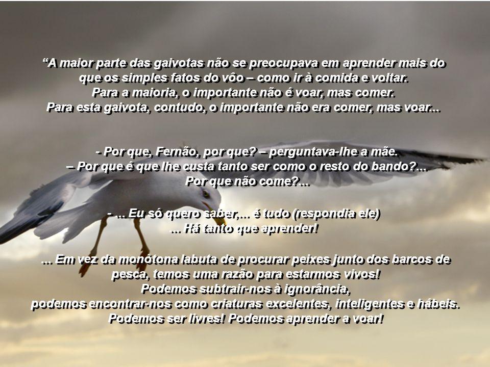 Este livro conta a história de uma gaivota que não se conforma em passar a vida em busca de alimento, disputando um peixe com o resto do bando...