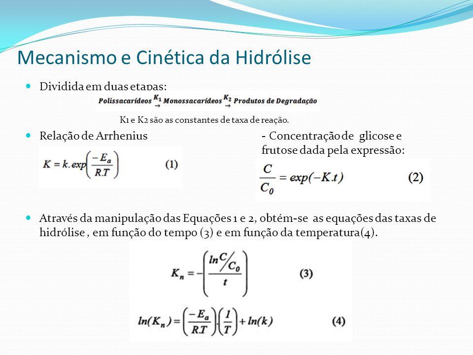 Mecanismo e Cinética da Hidrólise Dividida em duas etapas: K1 e K2 são as constantes de taxa de reação. Relação de Arrhenius - Concentração de glicose
