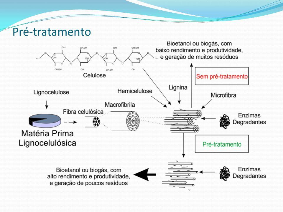 Processos de Hidrólise - Hidrólise Enzimática Vantagens em relação aos processos com ácidos: - Realização de hidrólise em temperaturas baixas (em torno de 40 - 50°C); - Baixa formação de subprodutos de degradação; Desvantagem em relação aos processos com ácidos: - Alto custo (Desenvolvimento tecnológico das enzimas); Alternativas aparentemente viáveis: - recuperação e a reciclagem das enzimas a partir do hidrolisado da celulose;
