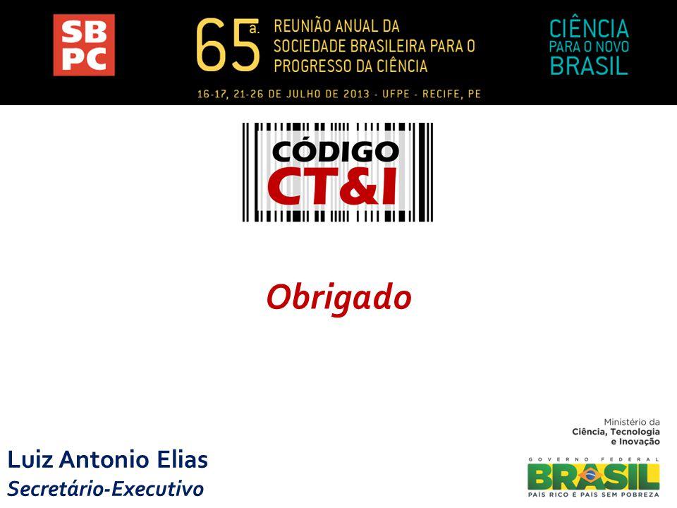 Luiz Antonio Elias Secretário-Executivo Obrigado