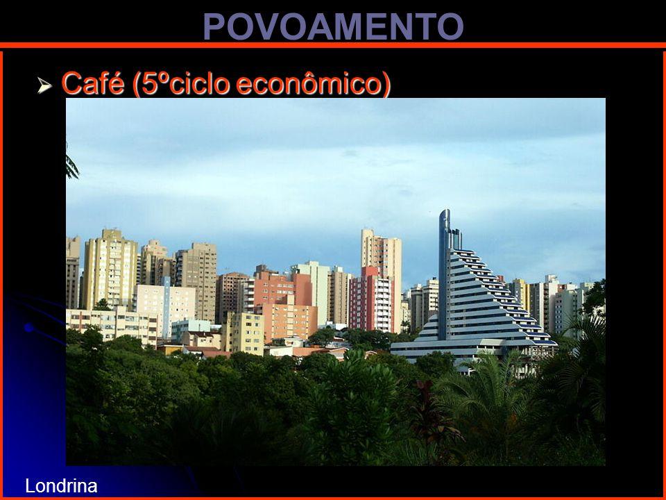 POVOAMENTO Café (5ºciclo econômico) Café (5ºciclo econômico) Londrina