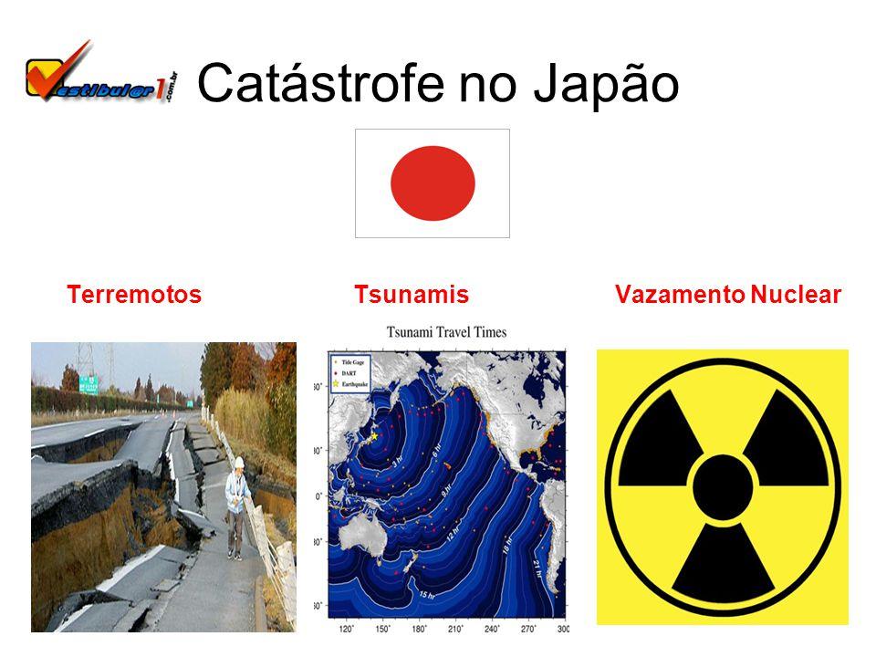 Catástrofe no Japão Terremotos Tsunamis Vazamento Nuclear