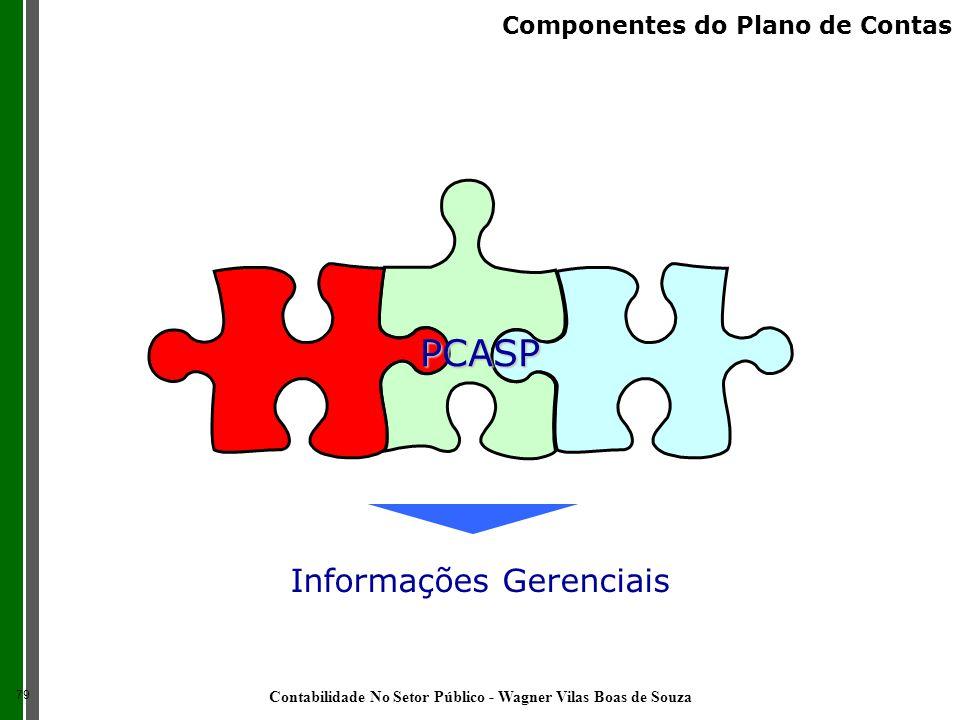 Informações Gerenciais PCASP 79 Componentes do Plano de Contas Contabilidade No Setor Público - Wagner Vilas Boas de Souza