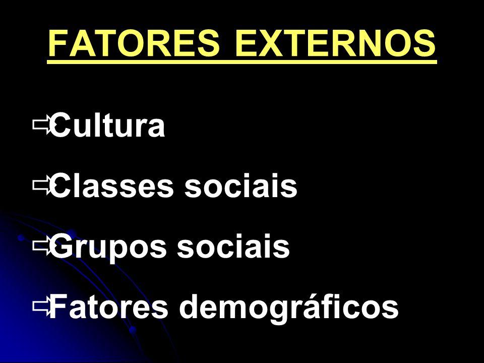 FATORES EXTERNOS Cultura Classes sociais Grupos sociais Fatores demográficos