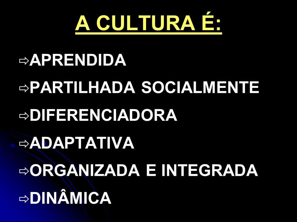 A CULTURA É: APRENDIDA PARTILHADA SOCIALMENTE DIFERENCIADORA ADAPTATIVA ORGANIZADA E INTEGRADA DINÂMICA