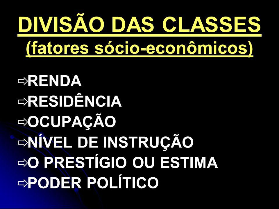 DIVISÃO DAS CLASSES (fatores sócio-econômicos) RENDA RESIDÊNCIA OCUPAÇÃO NÍVEL DE INSTRUÇÃO O PRESTÍGIO OU ESTIMA PODER POLÍTICO