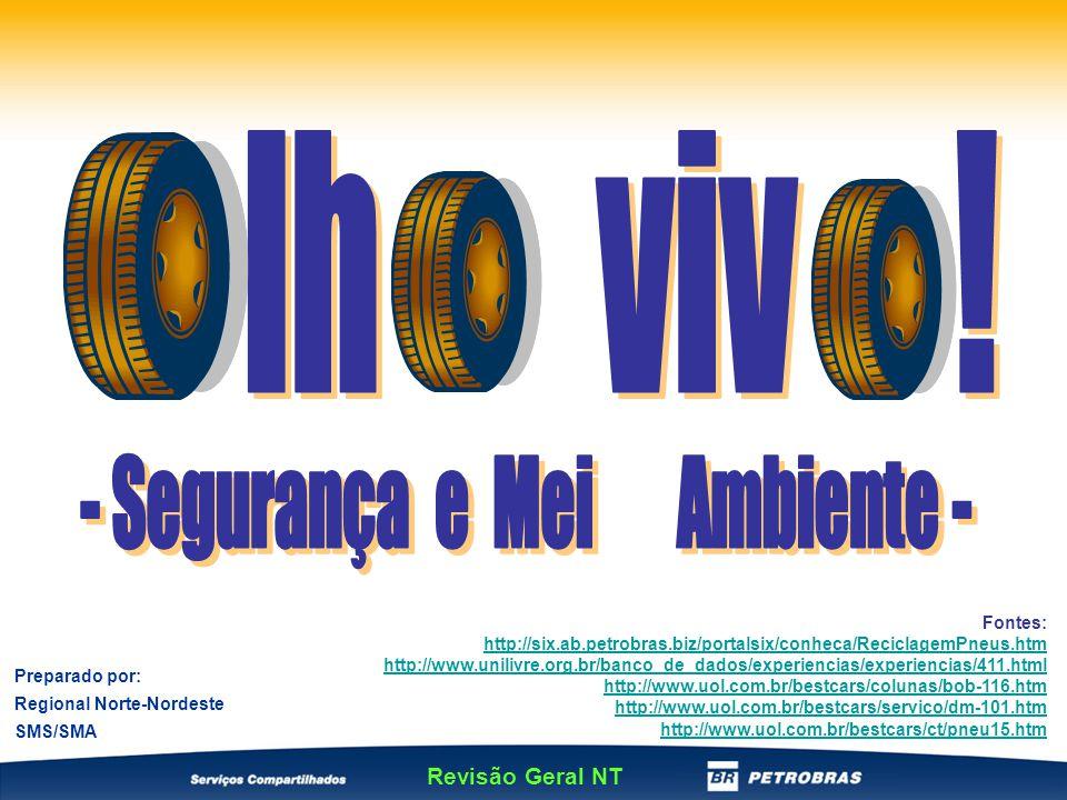 No co-processamento de pneu e xisto, são obtidos gases, óleo combustível e enxofre; Cada pneu fornece 52% de óleo, 2,4% de água, 3,6% de gás e 42% de