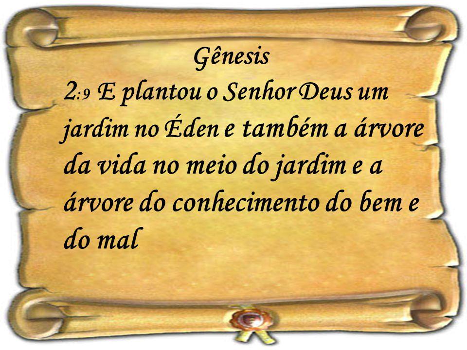 Gênesis 2 :9 E plantou o Senhor Deus um jardim no Éden e também a árvore da vida no meio do jardim e a árvore do conhecimento do bem e do mal