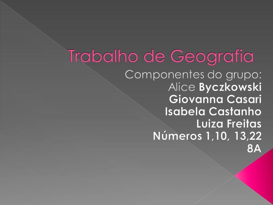 4- O BRASIL NO MERCOSUL O papel do Brasil no MERCOSUL é, portanto, cada vez mais integrador.
