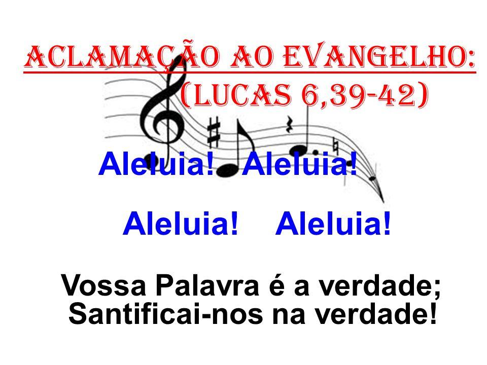 ACLAMAÇÃO AO EVANGELHO: (Lucas 6,39-42) Aleluia! Aleluia! Vossa Palavra é a verdade; Santificai-nos na verdade!