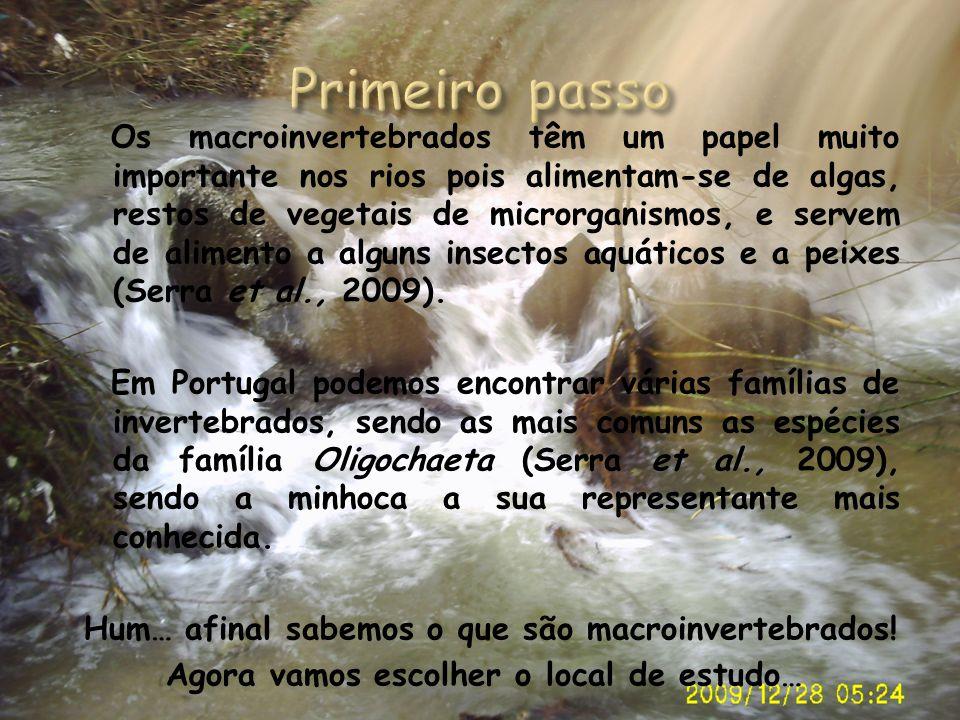 Os macroinvertebrados têm um papel muito importante nos rios pois alimentam-se de algas, restos de vegetais de microrganismos, e servem de alimento a
