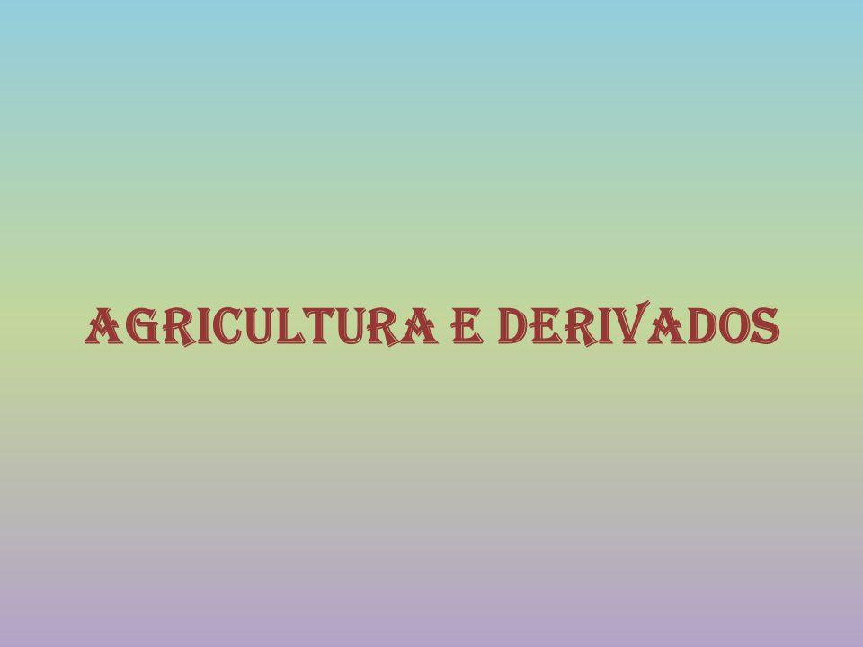 No concelho de Monchique Destaca-se uma forte produção silvícola (pinheiros e eucaliptos), e ainda algumas manchas de castanheiros e sobreiros, mas já com um menor peso na economia local.