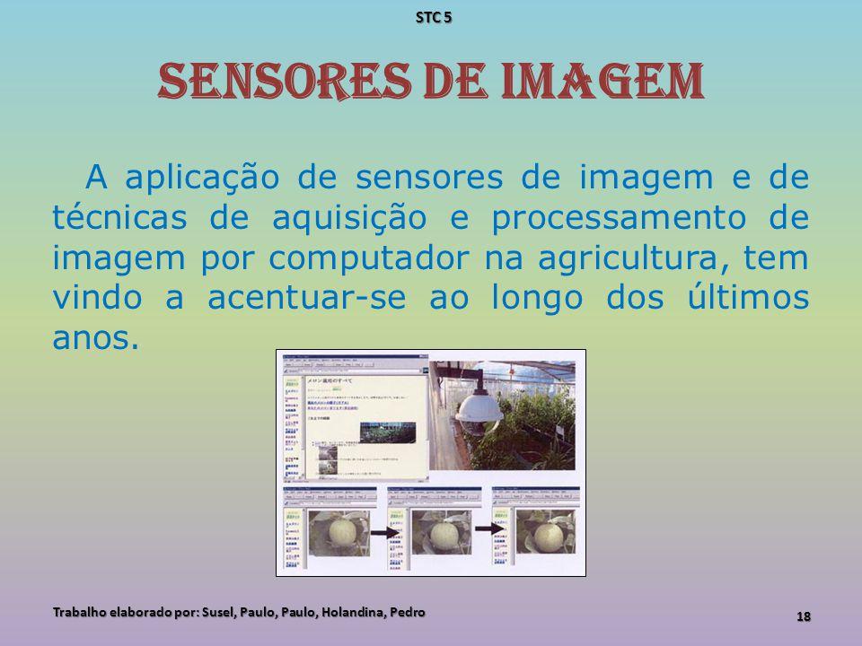 Sensores de imagem A aplicação de sensores de imagem e de técnicas de aquisição e processamento de imagem por computador na agricultura, tem vindo a a