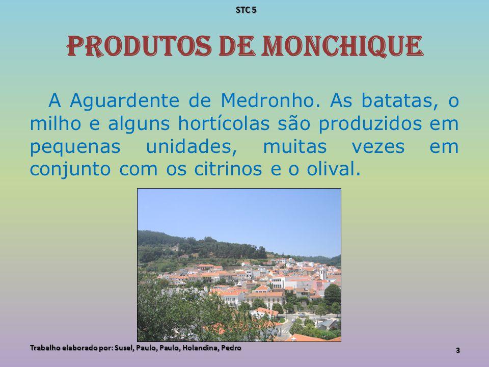 A suinicultura de Monchique A suinicultura intensiva de tipo industrial, mas também extensiva de tipo familiar e subsistência, é claramente uma vocação dos produtores de Monchique.