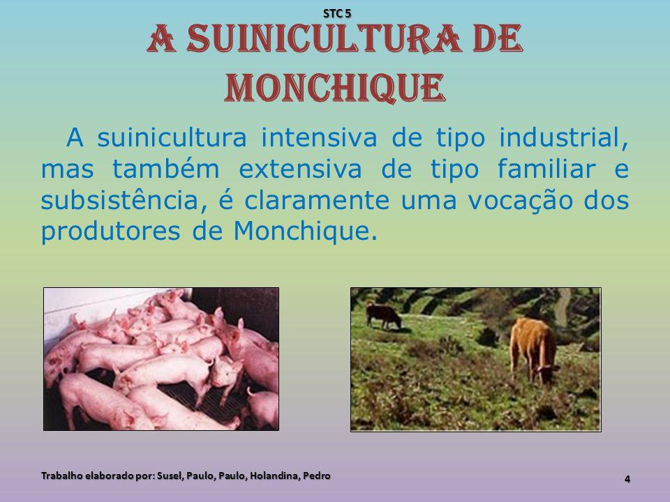 A suinicultura de Monchique Complementar à produção intensiva de suínos, existe, também em Monchique, uma importante actividade artesanal de produção de enchidos de muito boa qualidade a partir da criação extensiva do Porco Preto da Montanheira.