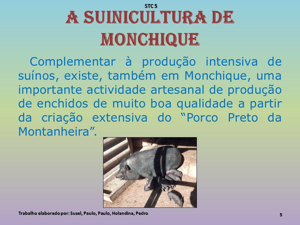 A apicultura em Monchique A apicultura é também uma actividade típica da Serra de Monchique, sendo o Mel das Serras de Monchique um produto com denominação de Origem protegida.