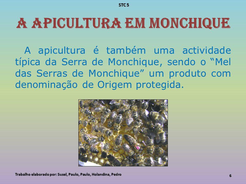 A apicultura em Monchique A apicultura é também uma actividade típica da Serra de Monchique, sendo o Mel das Serras de Monchique um produto com denomi