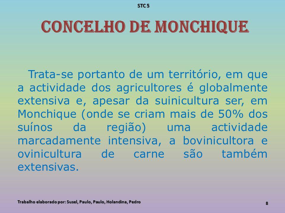 concelho de Monchique Trata-se portanto de um território, em que a actividade dos agricultores é globalmente extensiva e, apesar da suinicultura ser,