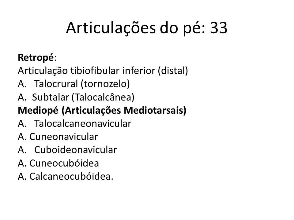 Antepé: A.Tarsometatarsais A. Intermetatarsais A.Metatarsofalângicas