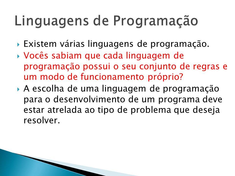 Existem várias linguagens de programação. Vocês sabiam que cada linguagem de programação possui o seu conjunto de regras e um modo de funcionamento pr