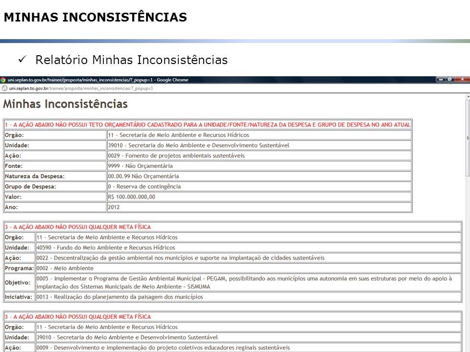 33 MINHAS INCONSISTÊNCIAS Relatório Minhas Inconsistências