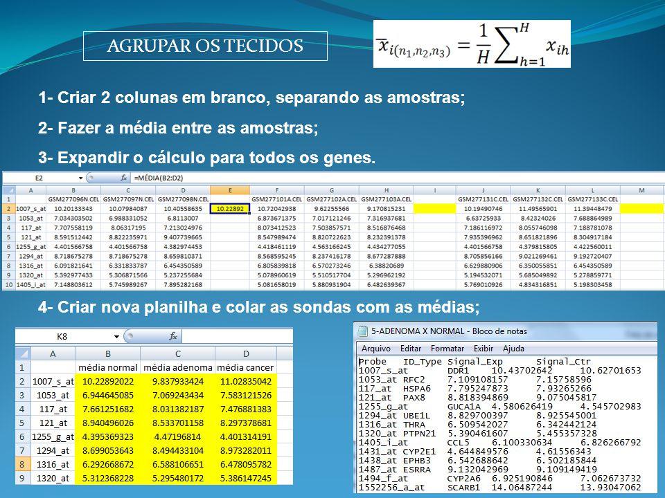 AGRUPAR OS TECIDOS 1- Criar 2 colunas em branco, separando as amostras; 2- Fazer a média entre as amostras; 3- Expandir o cálculo para todos os genes.