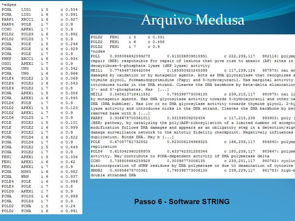 Passo 6 - Software STRING Arquivo Medusa
