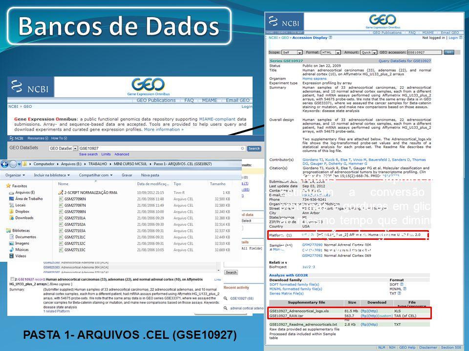 Adrenocortical Carcinomas, Adenomas GSE10927 PASTA 1- ARQUIVOS.CEL (GSE10927) Glândulas suprarrenais: Estimulam a conversão de proteínas e gorduras em