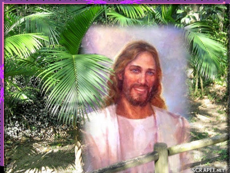 Jesus pede, aos que aceitaram embarcar na aventura do Reino, a superação de uma lógica de vingança, de responder na mesma moeda, e o assumir uma atitu