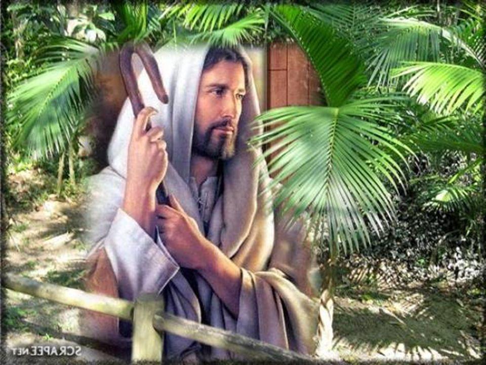 Sede santos porque Eu, o vosso Deus, sou santo.