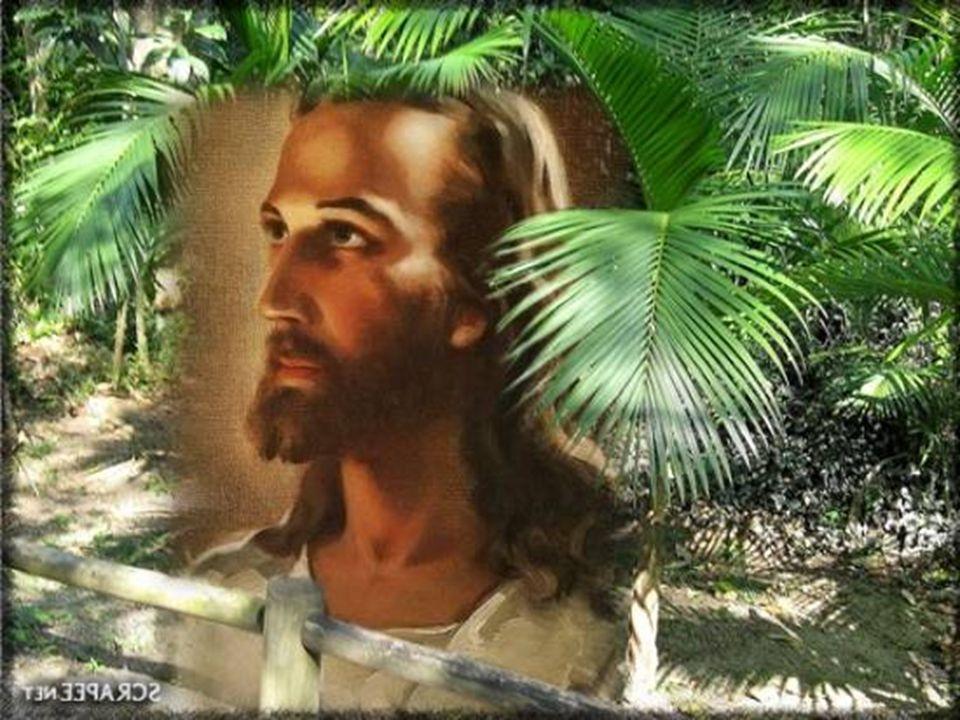 No entanto, a santidade não é uma anormalidade, mas uma exigência da comunhão com Deus. É o estado normal de quem se identifica com Cristo, assume a s