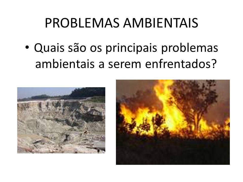 PROBLEMAS AMBIENTAIS Quais são os principais problemas ambientais a serem enfrentados?