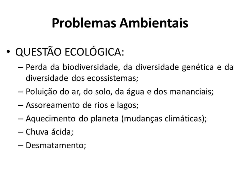 Problemas Ambientais QUESTÃO ECOLÓGICA: – Perda da biodiversidade, da diversidade genética e da diversidade dos ecossistemas; – Poluição do ar, do sol