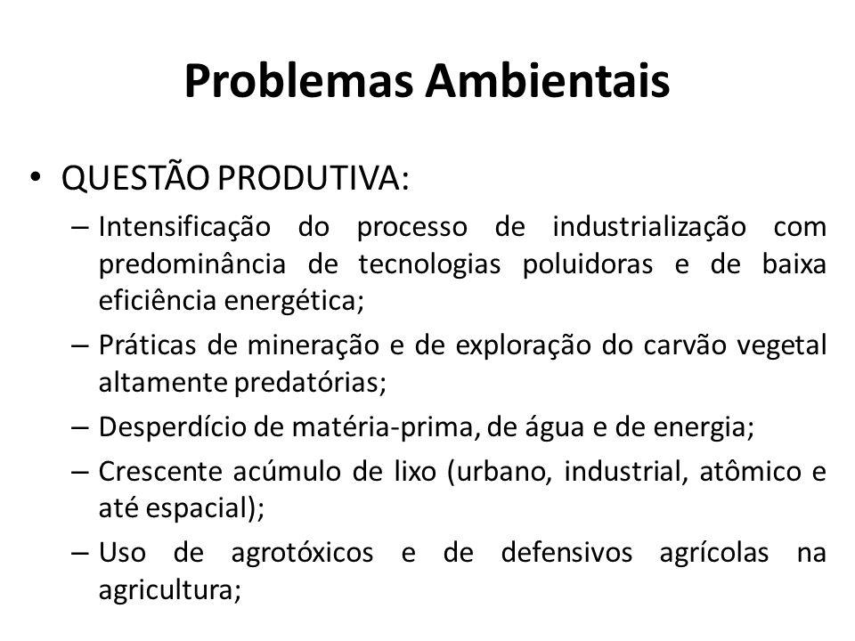 Problemas Ambientais QUESTÃO PRODUTIVA: – Intensificação do processo de industrialização com predominância de tecnologias poluidoras e de baixa eficiê