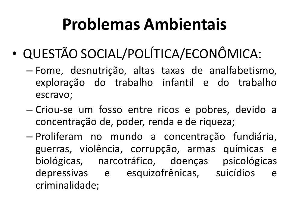 Problemas Ambientais QUESTÃO SOCIAL/POLÍTICA/ECONÔMICA: – Fome, desnutrição, altas taxas de analfabetismo, exploração do trabalho infantil e do trabal