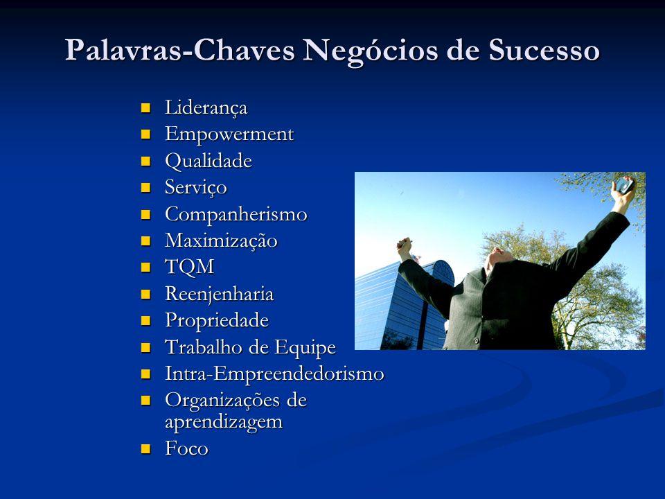 Palavras-Chaves Negócios de Sucesso Liderança Liderança Empowerment Empowerment Qualidade Qualidade Serviço Serviço Companherismo Companherismo Maximi