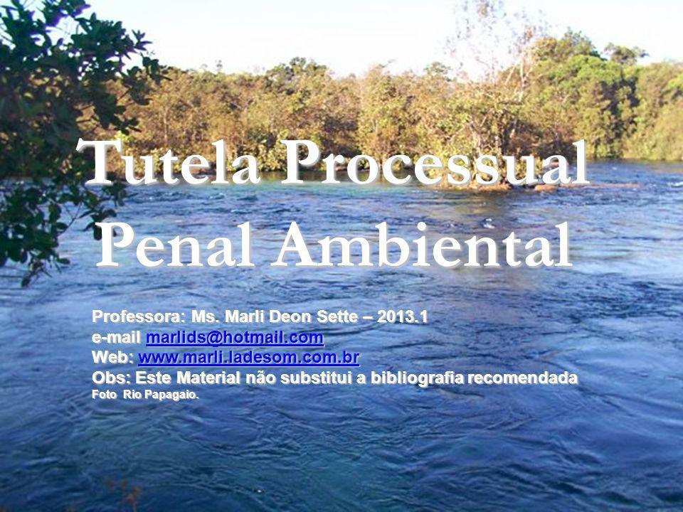 2 TUTELA e RESPONSABILIDADE PENAL Lei 9605/98 Lei da Natureza Tutela Processual Penal Ambiental Professora: Ms. Marli Deon Sette – 2013.1 e-mail marli