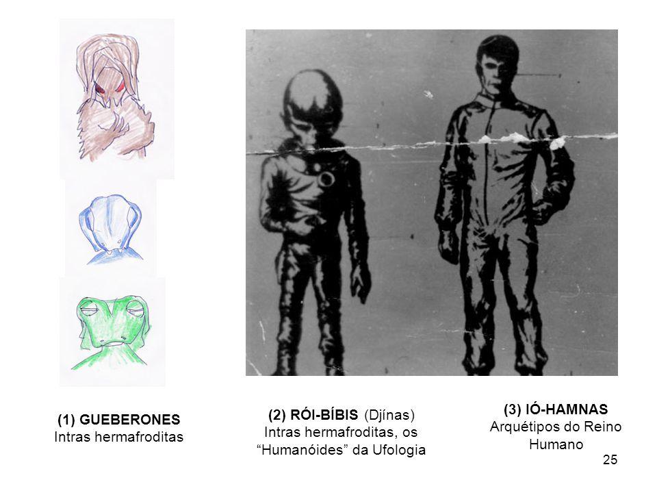 25 (1) GUEBERONES Intras hermafroditas (2) RÓI-BÍBIS (Djínas) Intras hermafroditas, os Humanóides da Ufologia (3) IÓ-HAMNAS Arquétipos do Reino Humano