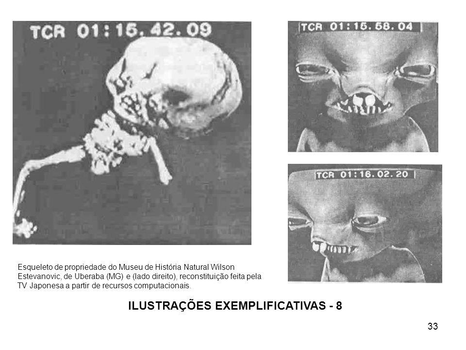 33 ILUSTRAÇÕES EXEMPLIFICATIVAS - 8 Esqueleto de propriedade do Museu de História Natural Wilson Estevanovic, de Uberaba (MG) e (lado direito), recons