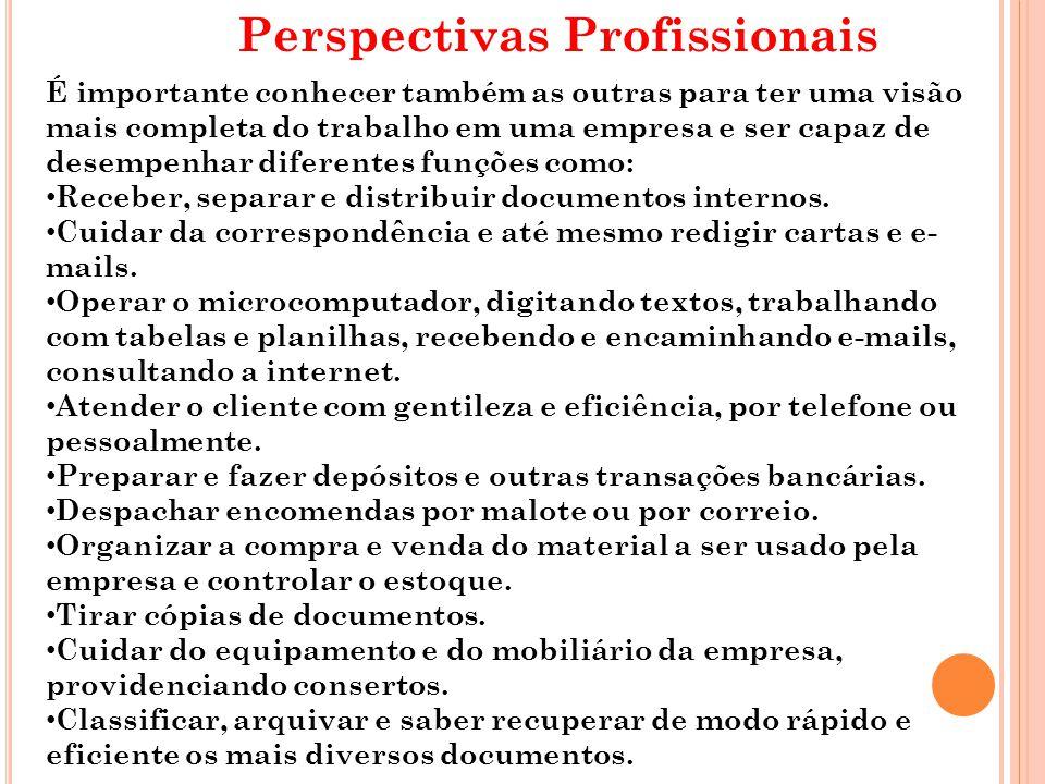 Perspectivas Profissionais É importante conhecer também as outras para ter uma visão mais completa do trabalho em uma empresa e ser capaz de desempenh