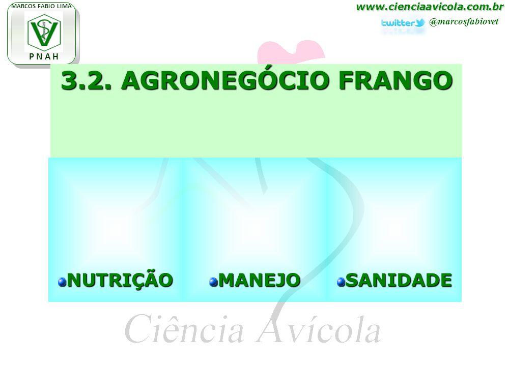 www.cienciaavicola.com.br @marcosfabiovet MARCOS FABIO LIMA P N A H 3.2. AGRONEGÓCIO FRANGO NUTRIÇÃOMANEJOSANIDADE