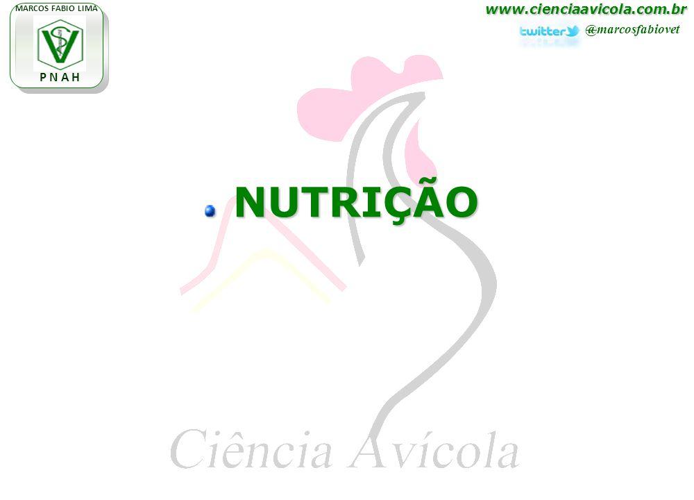 www.cienciaavicola.com.br @marcosfabiovet MARCOS FABIO LIMA P N A H NUTRIÇÃO NUTRIÇÃO