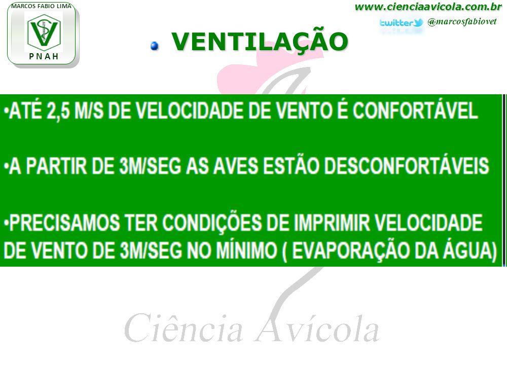 www.cienciaavicola.com.br @marcosfabiovet MARCOS FABIO LIMA P N A H VENTILAÇÃO VENTILAÇÃO