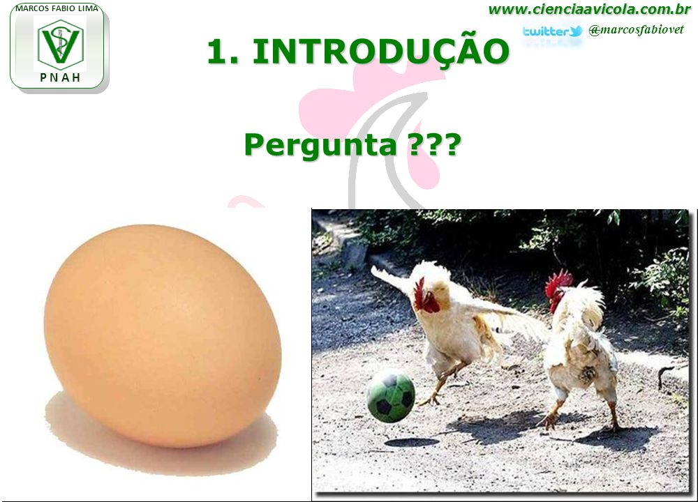 www.cienciaavicola.com.br @marcosfabiovet MARCOS FABIO LIMA P N A H 1. INTRODUÇÃO Pergunta