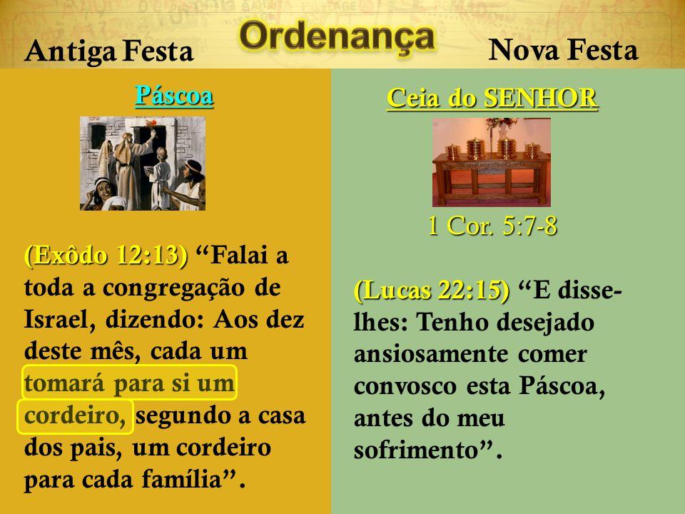 Antiga Festa Nova Festa Páscoa (Exôdo 12:5) O cordeiro será sem defeito, macho de um ano; podereis tomar um cordeiro ou um cabrito.