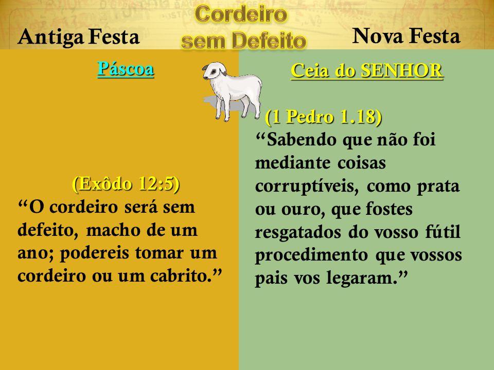 Antiga Festa Nova Festa Páscoa (Exôdo 12:5) O cordeiro será sem defeito, macho de um ano; podereis tomar um cordeiro ou um cabrito. Ceia do SENHOR (1