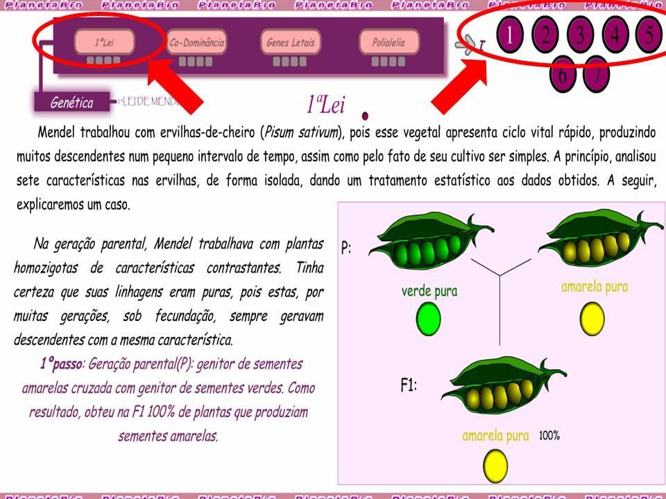 04)O casal Deolindo e Elvira quer ter 6 filhos.